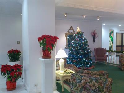 ロイヤルクヒオのクリスマスツリー
