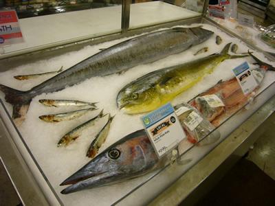 ハワイの魚