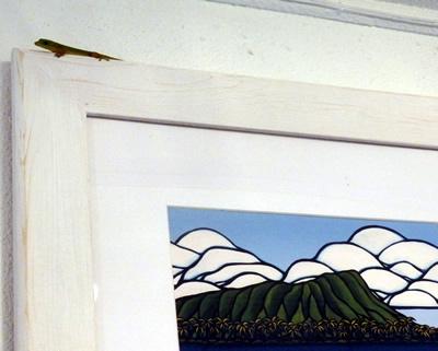 gekkoがフレームの上に。。。