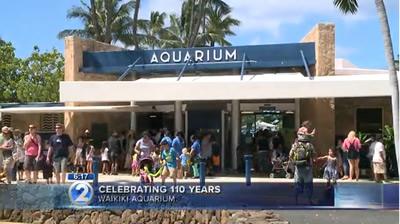 Waikiki Aquarium, (C) khon2