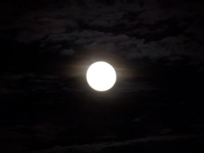 贅沢なお月見