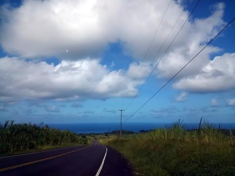 Akaka FallsからHonomuへの道中